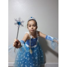 Elsa Kostümü